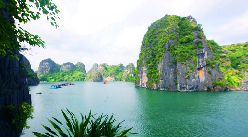 Một góc Vung Viêng ngát màu xanh của cây cỏ, dáng núi hòa với nước biển.