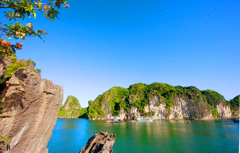 Một góc yên bình, tươi đẹp ở khu vực Vung Viêng