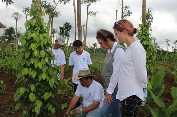 Bà HeiDi Kuhn ( đứng giữa) thăm vườn tiêu của nông dân huyện Hướng Hóa