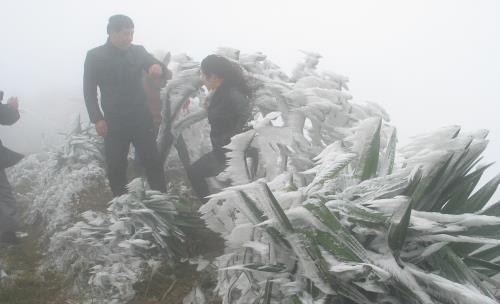 Nhiệt độ xuống thấp, xuất hiện băng giá ở một số vùng núi cao. Ảnh: TTXVN