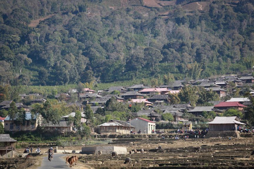 Để có được những ngôi nhà bằng gỗ pơ mu đều tăm tắp, người dân Ngọc Chiến phải rất vất vả. Ảnh: Zing.vn