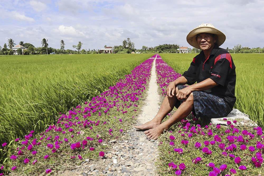 Ông Thảnh (SN 1953, Tiền Giang) là chủ nhân của con đường hoa mười giờ ở Gò Công, Tiền Giang. Hiện tại, ông Thảnh và vợ trông coi hơn 10 công ruộng.