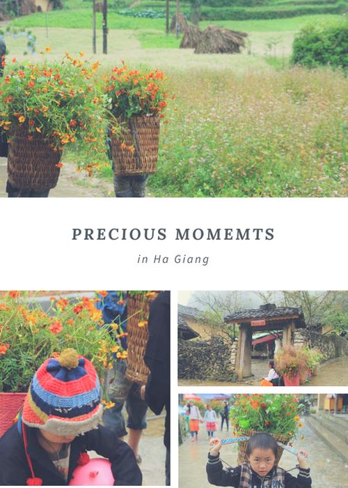 Mùa hoa ở Hà Giang