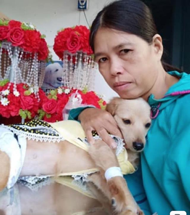 Chân dung chị Thanh Hà - người sở hữu và cưu mang hơn 100 con chó, mèo.