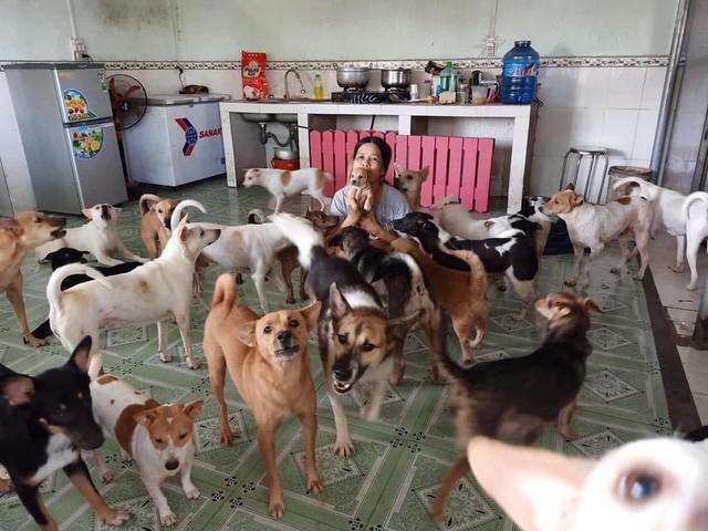 Chị Thanh Hà cùng với các chú chó được chị cưu mang và coi như con.