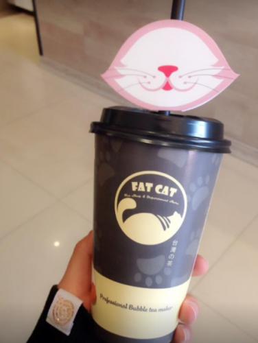 Thiết kế bao bì đồ uống tại The Fat Cat Tea khá dễ thương (Nguồn: The Fat Cat Tea Thái Bình)
