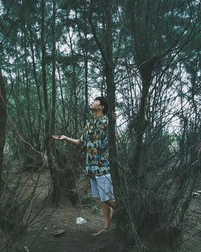 Khám phá vẻ đẹp của những cánh rừng trên Cồn Vành. (Ảnh: Instagram)
