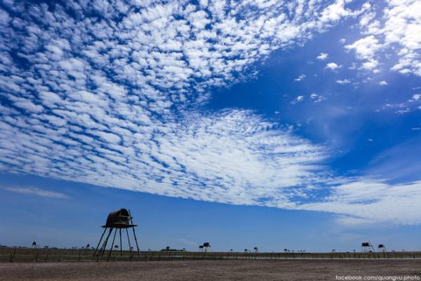 Cánh đồng ngao tại vùng biển Đồng Châu (Ảnh: FB quangvu.photo)