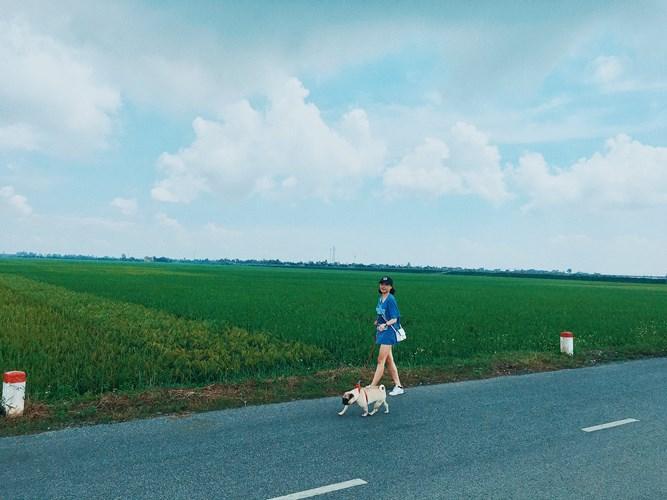 Đồng lúa thẳng cánh cò bay, cũng là một hình ảnh rất quen thuộc ở Thái Bình. Lúa sắp chín rồi kìa, xách balo đi còn chờ gì nữa các bạn. Ảnh: Phương Ngân Trịnh.