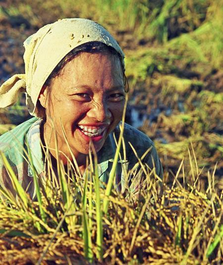 Ảnh: Duy Đông/Baothaibinh.com.vn.