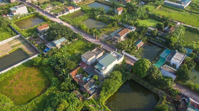 Dự án đất nông nghiệp chuyển đổi từ mô hình cấy lúa kém hiệu quả sang nuôi trồng thủy sản kết hợp trồng cây ăn quả tại thôn Vũ Trường, xã Vũ Chính, TP Thái Bình nhìn từ trên cao