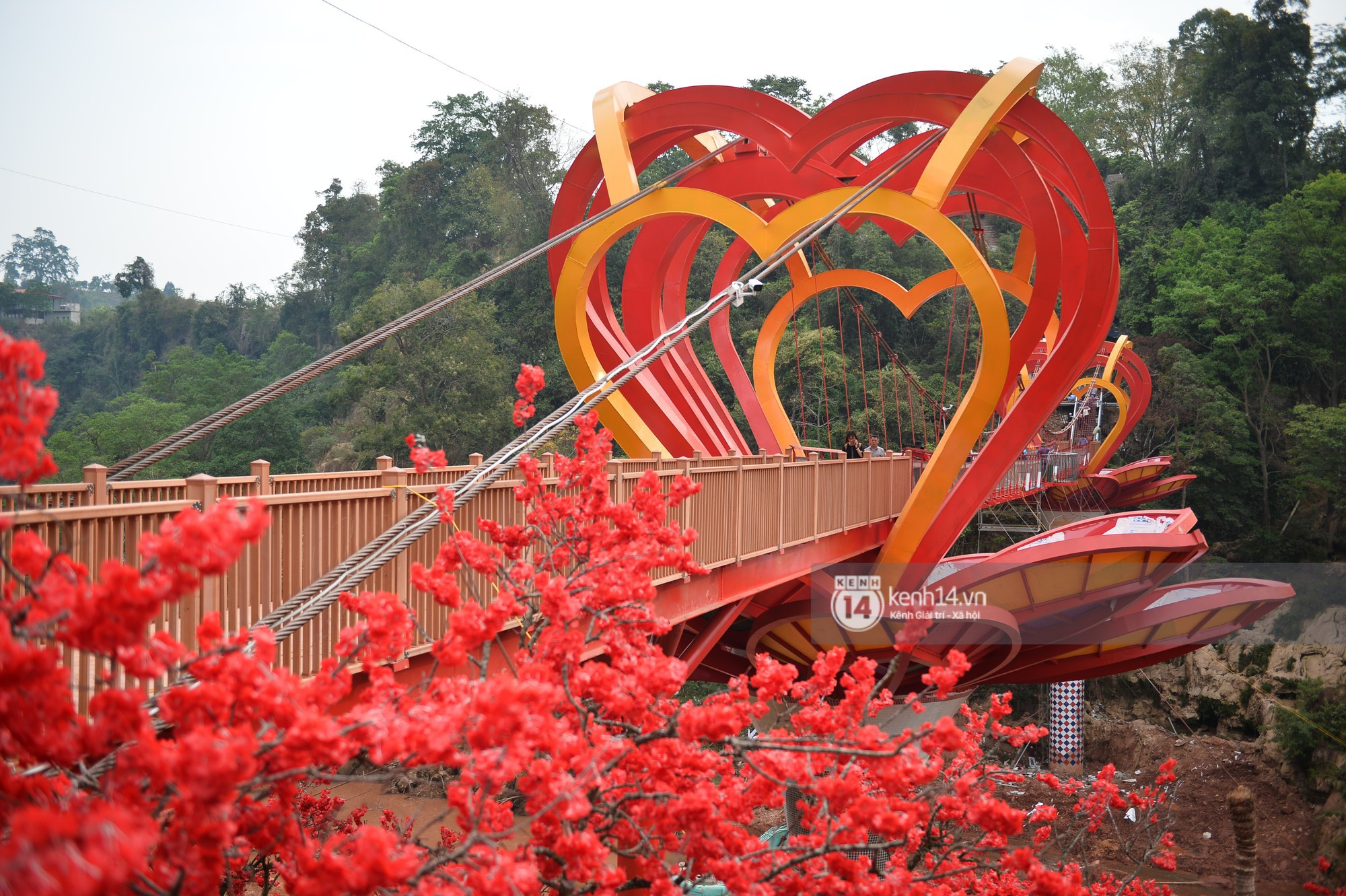Đây là chiếc cầu kính đầu tiên của Việt Nam và có hiệu ứng led ở trên cầu.