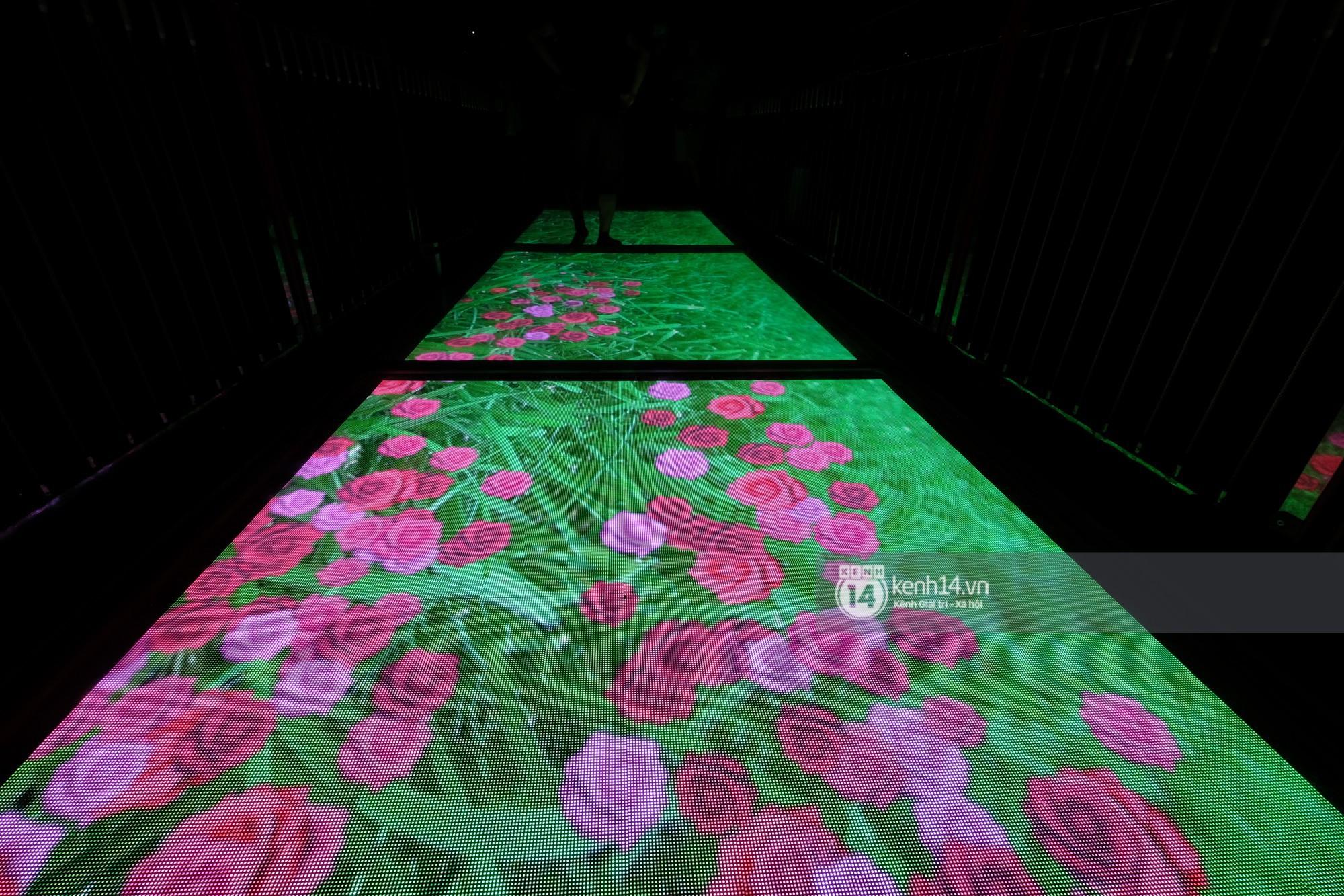 Mỗi màn hình có hơn 56 hiệu ứng khác nhau, nên du khách sẽ có cảm giác đi trên thảm hoa, bể cá hoặc cảm giác mảnh kính vỡ với màn hình led tiêu chuẩn và tiếng hiệu ứng phát hai bên thành cầu đầy sống động.