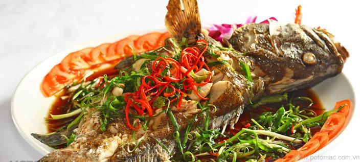 Cá song ở Cát Bà được đánh bắt tự nhiên. Với thịt trắng, vị thơm ngon và hàm lượng dinh dưỡng cao, loại cá này được coi là một trong những món đặc sản trên vùng đảo. Cá song được các nhà hàng ở đây nấu thành cháo, lẩu, hấp, làm gỏi, nướng hay hấp xì dầu. Món nào cũng ngon và có vị đậm đà đặc trưng.