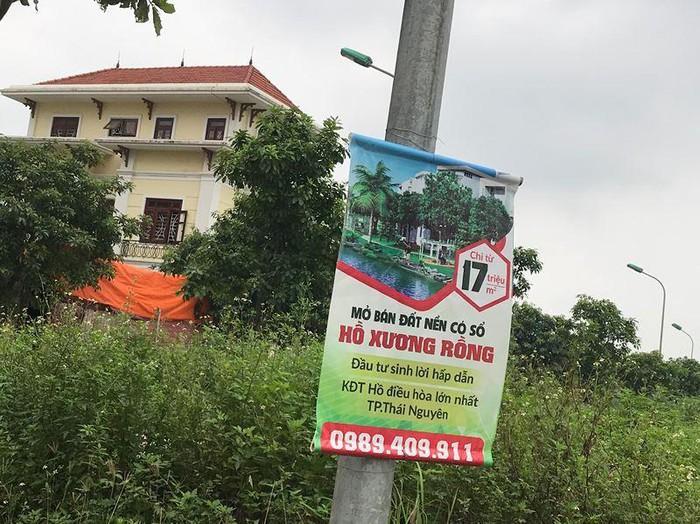 Công ty môi giới Bất động sản quảng cáo tràn lan, thổi phồng dự án để đẩy giá đất lên cao