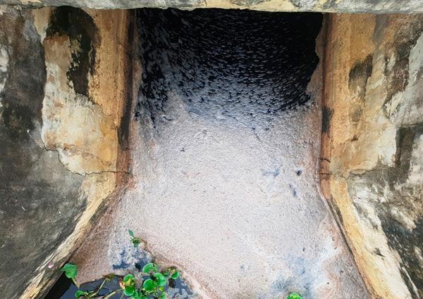 Nước thải chảy trực tiếp ra kênh mương bên ngoài