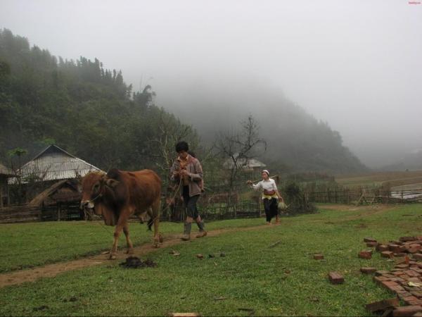 Cuộc sống giản dị của đồng bào Thái ở Son Bá Mười. (Nguồn: dung_ninh53)
