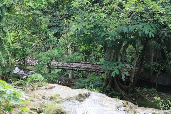 Khung cảnh xanh xanh nơi núi rừng. (Nguồn: foody.vn)
