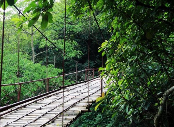 Cây cầu nhỏ bắc qua dòng thác. (Nguồn: foody.vn)