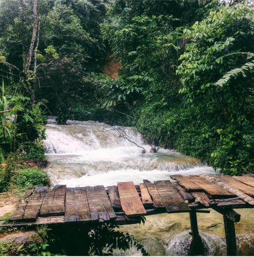 Thác nước chảy róc rách giữa núi rừng. (Nguồn:  tttmai_)