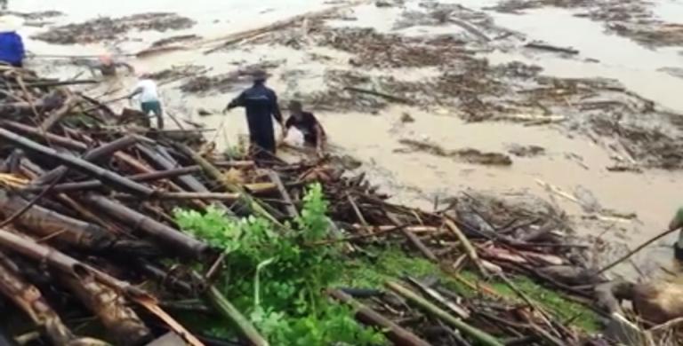 Người dân bất chấp nguy hiểm ra sông vớt củi.