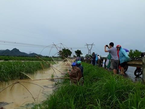 Hàng chục lưới vó được người dân đặt thành hàng để kéo cá.