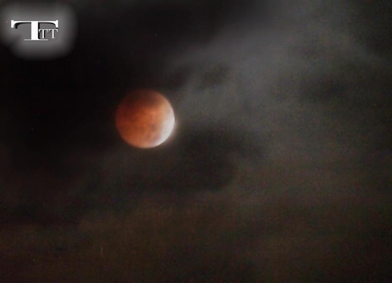 Nếu nhật thực chỉ có thể được nhìn thấy từ một khu vực tương đối nhỏ trên thế giới thì nguyệt thực có thể được nhìn từ bất cứ nơi nào ở nửa tối của trái đất.