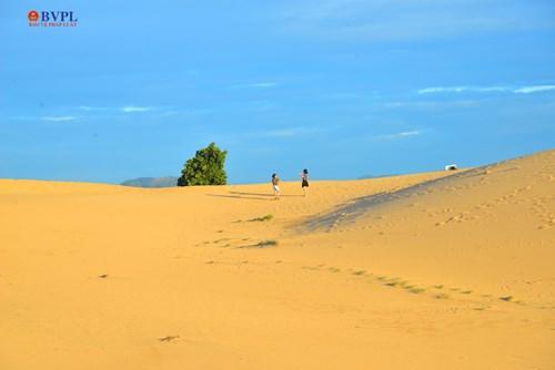 Cả vùng đồi cát trắng mênh mông được bao phủ một màu vàng cam. Có chút gì huyền bí...