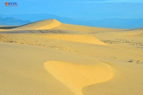 Gió cũng khiến những đồi cát luôn biến hình.