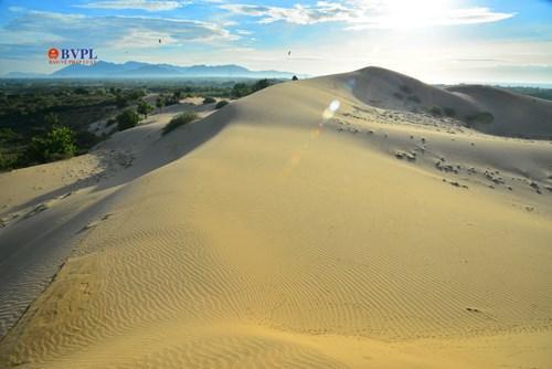 Chỉ có cát và cát, nắng lửa, gió mạnh, lượng mưa bình quân chỉ khoảng 400-600mm/năm và không có sự xuất hiện của nước, đồi cát Nam Cương có đặc trưng của một sa mạc.