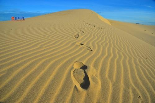 Những dấu chân hằn trên cát sẽ mau chóng bị cát bay lấp đầy, xóa đi.