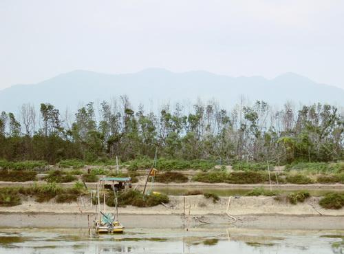 Nhiều đầm tôm ở xã Tân Hải (Ninh Hải, Ninh Thuận) phải bỏ không vì chủ đầm bất cẩn bị tai nạn do máy sục khí nuôi tôm cuốn vào.