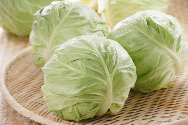 Bắp cải rất giàu vitamin tốt cho sức khỏe nhưng không phải ai cũng có thể ăn. Ảnh minh họa