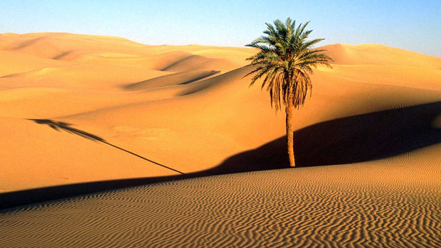 Sa mạc Thar