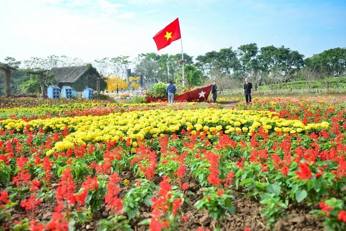 Không gian đặt tấm bản đồ Việt Nam kết từ hoa này rộng khoảng 3000m2 với những loại hoa đẹp, rực rỡ sắc màu như hoa xác pháo, hoa cẩm chướng, thạch thảo, ngọc thảo, cúc mâm xôi...