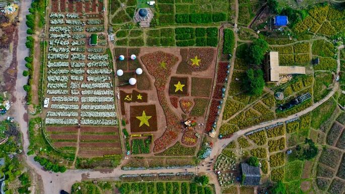Tấm bản đồ Việt Nam làm từ 150.000 cây hoa đang xuất hiện tại thảo nguyên hoa Long Biên (Thạch Cầu - Long Biên - Hà Nội).