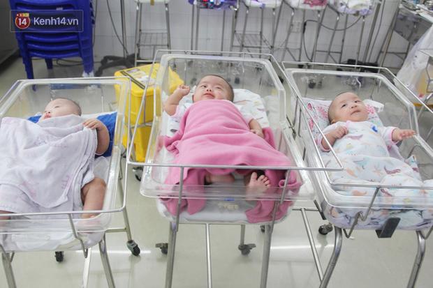 Khi mới chào đời, các bé gái chỉ nặng 1.1kg, 1.3kg và 1.9kg, suy hô hấp nặng. Nhờ có bàn tay chăm sóc của các điều dưỡng, các bé ngày càng bụ bẫm, đáng yêu.
