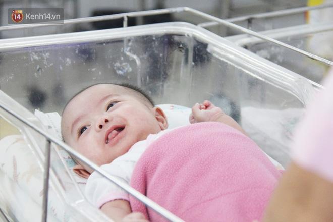 Hai bé gái kháu khỉnh hiện đã hơn 4 tháng tuổi bị mẹ bỏ rơi sau khi sinh.