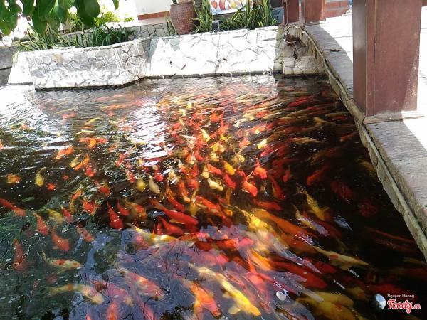 Không gian hồ cá. (Nguồn: foody.vn)