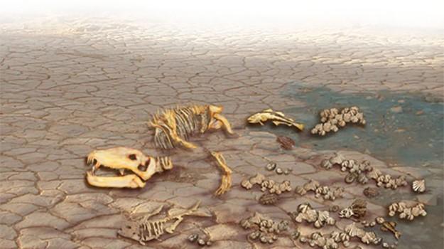 Quên khủng long đi, đây mới là vụ tuyệt chủng kinh hoàng nhất trong lịch sử Trái đất - Ảnh 2.