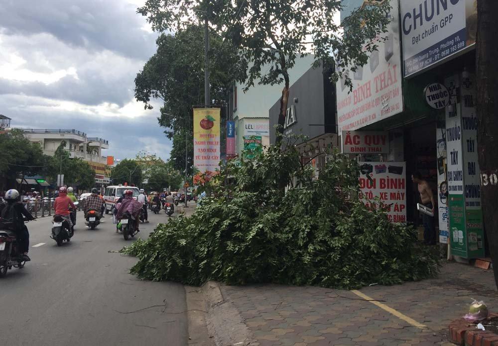 Một nhánh cây khác gãy ngang trên đường Quang Trung gây nguy hiểm cho người đi đường