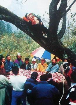 Cảnh phim Trư Bát Giới ngủ trên cây cũng cần huy động toàn bộ ê-kíp sản xuất, diễn viên tham gia. Vì lo lắng Trư Bát Giới có thể ngã, Sa Tăng cùng đoàn phim phải giữ cao tấm chăn lớn để đề phòng.