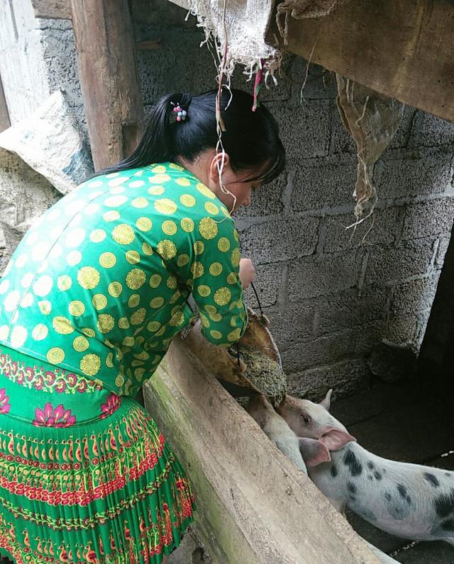 Ngoài bán đào, Chở còn chăm sóc trâu, bò, lợn, gà giúp bố mẹ