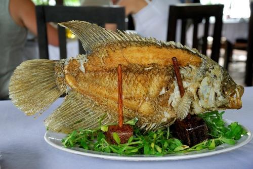 Món cá tai tượng chiên xù đẹp mắt. Ảnh: Flickr