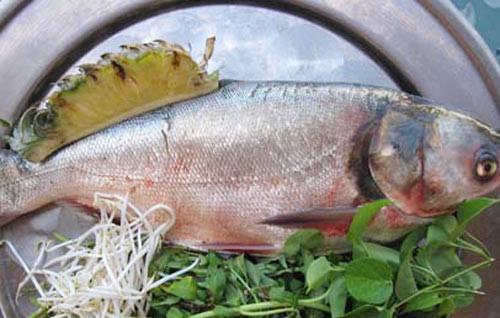 """Đối với người miền Bắc và người miền Trung, cá mè thường có nghĩa là """"mè nheo"""". Loại cá này còn khá tanh và nhiều xương nên người ta cho rằng ăn cá mè đầu năm thì cả năm sẽ bị đen đủi."""