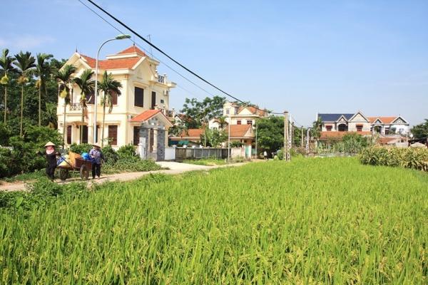 Bức tranh nông thôn mới đang hiện hữu từng ngày trên quê hương Vĩnh Phúc (Ảnh: Báo Vĩnh Phúc)