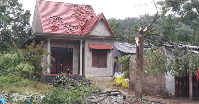 Thiệt hại do bão số 10 gây ra (Ảnh: Điền Bá Quang - Zing News)