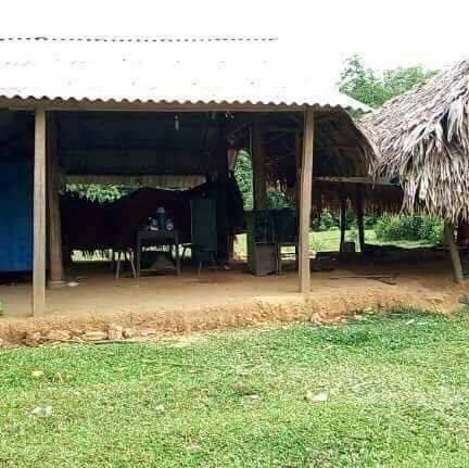 Căn nhà đơn sơ của 3 mẹ con Minh.