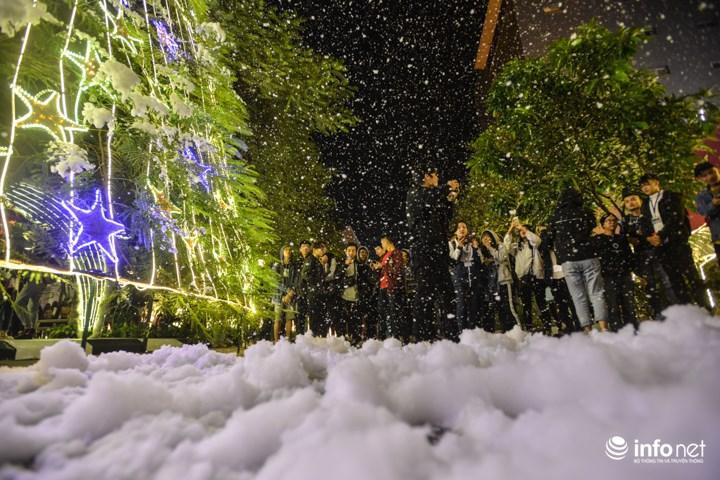 Mưa tuyết trắng xóa dưới gốc cây thông Noel được kết từ những tán cây phượng.