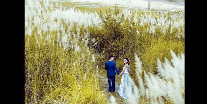 Không chỉ thế, nhiều cặp đôi cũng lựa chọn bãi lau là nơi gửi gắm những bộ ảnh cưới giản dị mộc mạc nhưng không kém phần lãng mạn. (Ảnh: MrHanhphuc)